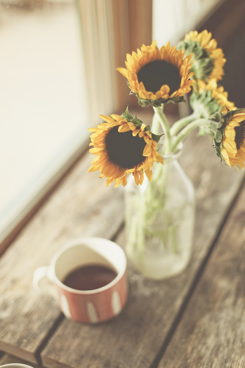 sunflowers_1